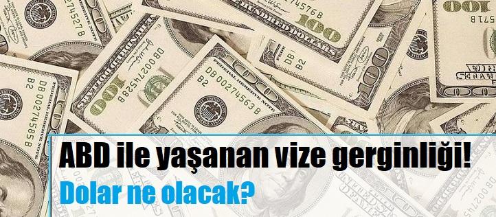 abd vize sorunu ve dolar tl