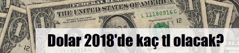 dolar 4.5 tl olacak mı 2018