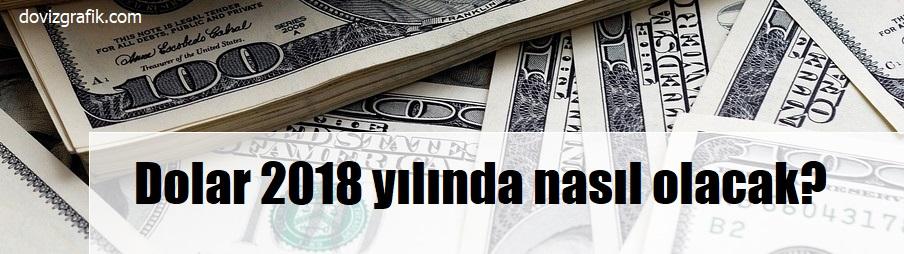 dolar 2018 yılında nasıl olacak?