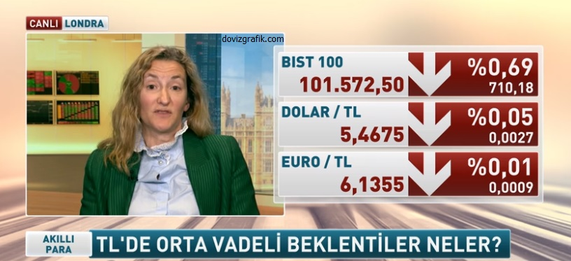 dolar tl tahmini 2019